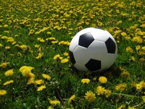 fodbold-og-maelkeboetter